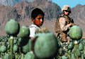 children drug trade us forces afghanistan s